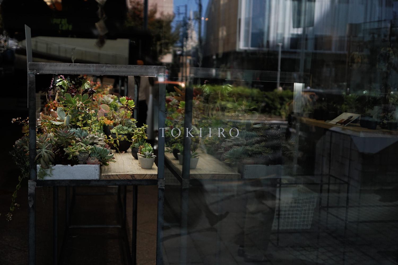 tokiiro_minato008